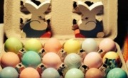 Easter Eggs in a box